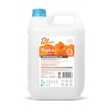 Средство для мытья посуды Palmia Tropica 5 л.