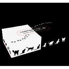"""Салфетки бумажные универсальные non-stop """"Cats"""", 100 лист/уп,(37 уп/кор), арт.271565"""