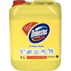 Моющее средство для ежедневной уборки / Domestos Fresh Citrus, арт. 100867027